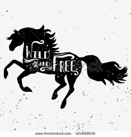 Wild and free. Hand drawn typography poster with horse silhouette and lettering. Vector illustration with grunge texture. Can be used as  print for Tshirt, bags and posters