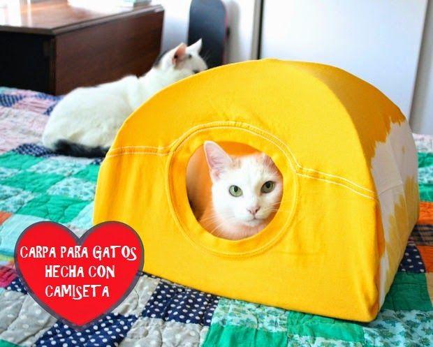Cómo hacer una carpa para gatos reciclando una camiseta - Vida Lúcida