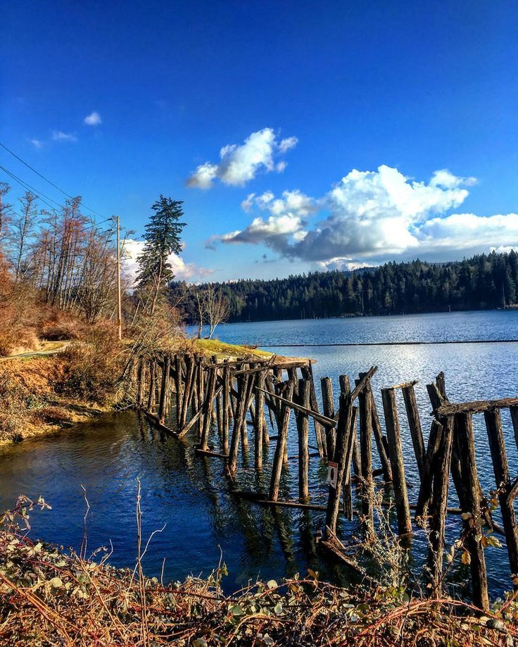 47 hikes to do this spring in and around Metro Vancouver   Daily Hive Vancouver