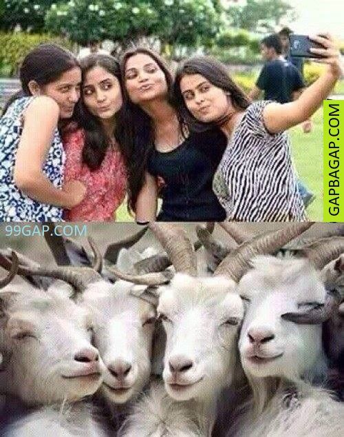 Top 10 Funny Selfies Collection From Around The World