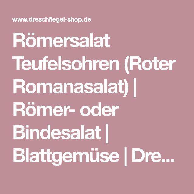 Römersalat Teufelsohren (Roter Romanasalat) | Römer- oder Bindesalat | Blattgemüse | Dreschflegel Saatgutversand auch über bio-Saatgut.de