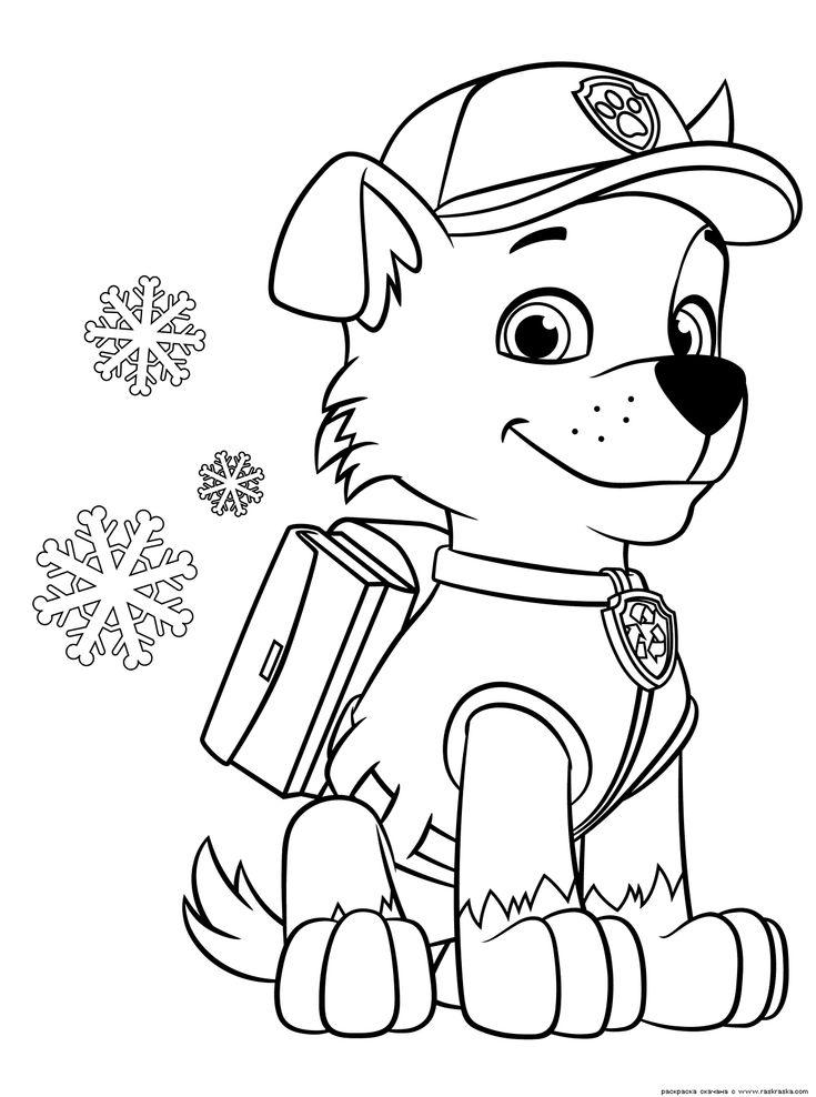 картинки как нарисовать поэтапно рокки из щенячьего патруля спустя