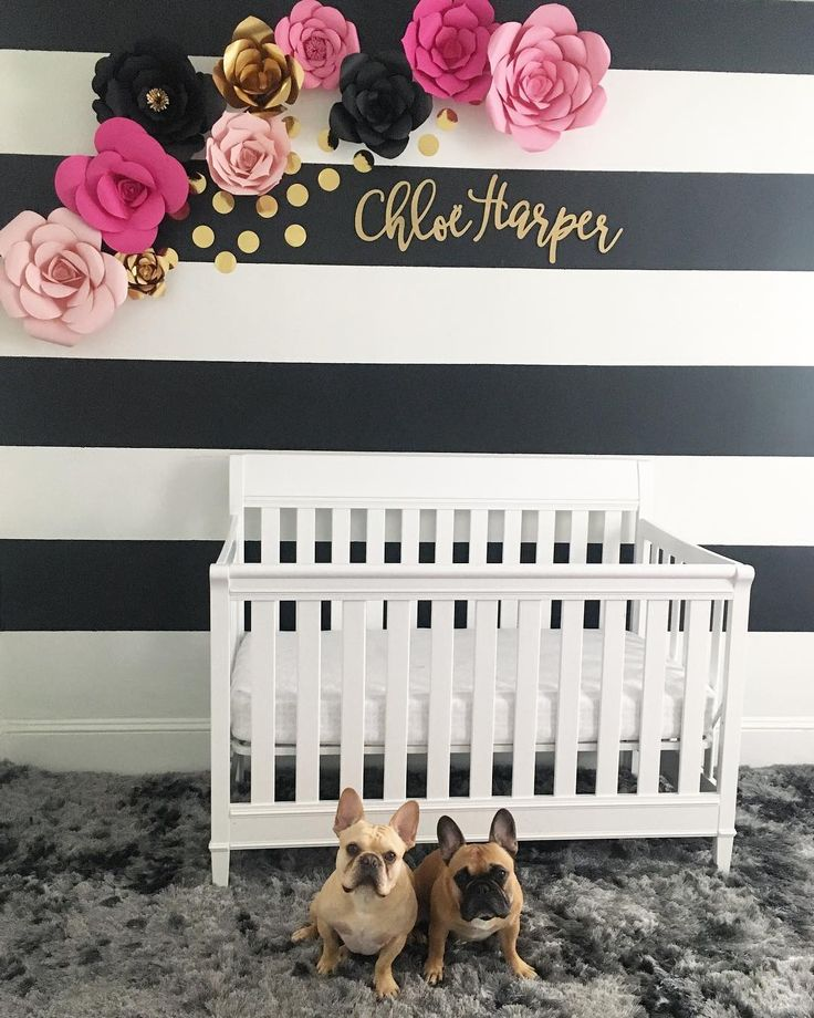 """564 Likes, 22 Comments - Jax & Opie (@jax_thefrenchie_) on Instagram: """"Mom's extra time has been spent making these paper flowers 🌺 But now our little sister's nursery is…"""""""