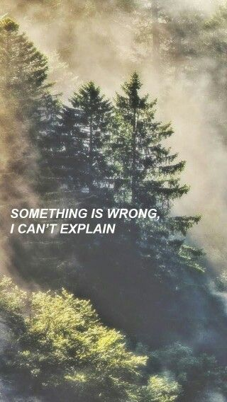 Everything changed when the birds came Prey // The Neighbourhood