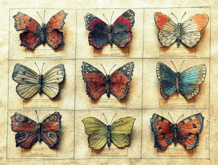 Textile Art, 3d embroidery, Butterfly collection, assemblage, by Corinne Young