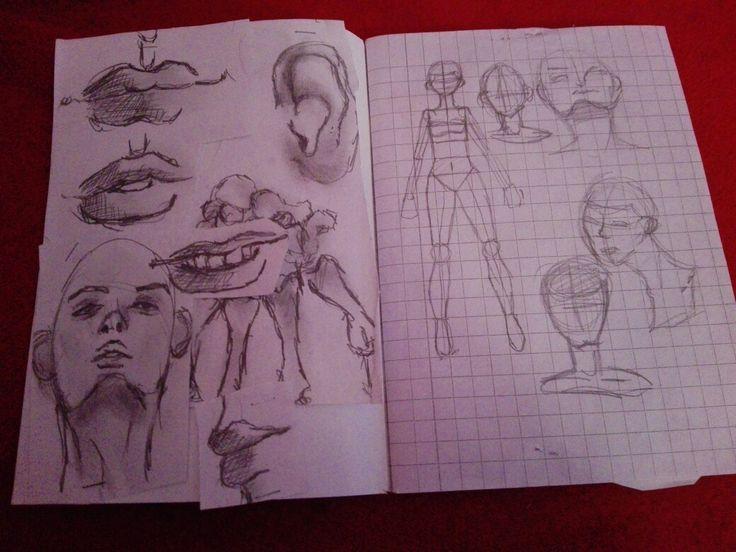 I tried , anatomy drawing