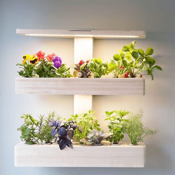 25+ Best Indoor Zen Garden Ideas On Pinterest