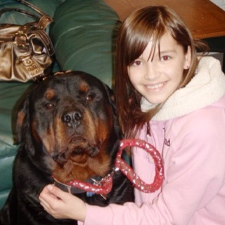 This Rottweiler was the best thing that ever happened to me! He got hit by a car on march 9, 2011 and died on march 10, 2011. Now every march 9th and march 10th wear red to remember him!!:) please and thank you!:)
