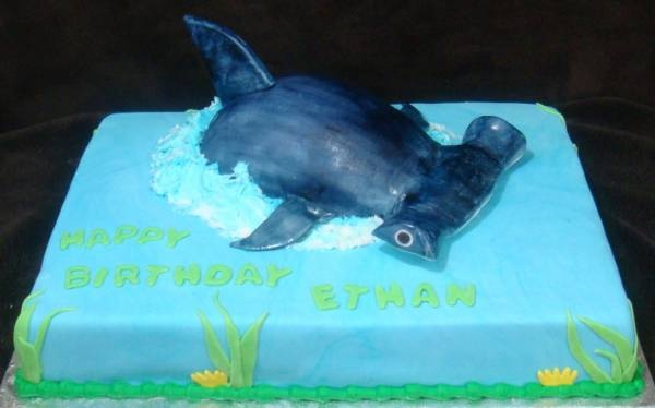 hammerhead shark birthday cakes | Touch Of Cake - Our Cakes