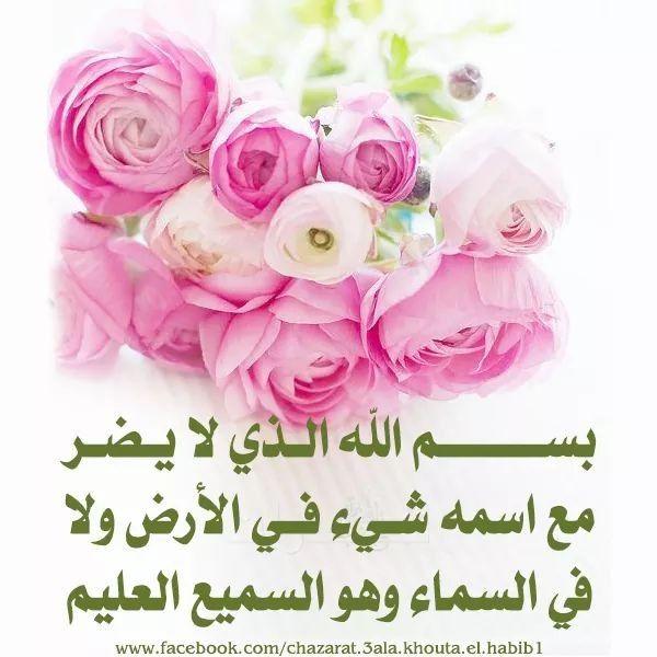 أذكار الصباح Rose Flowers Plants