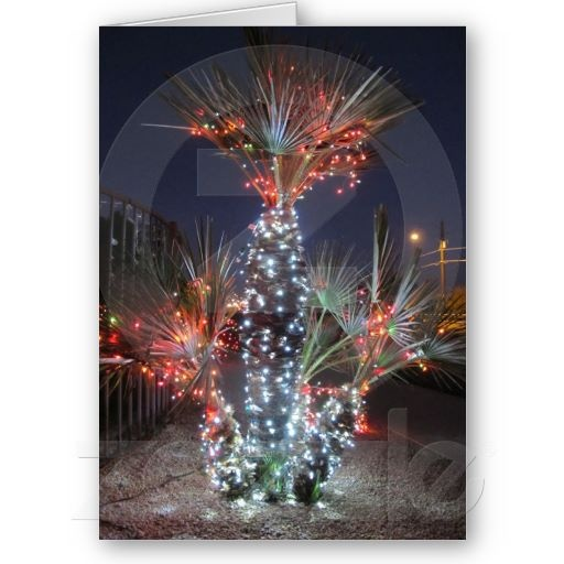 Christmas in Phoenix Arizona Card  sc 1 st  Pinterest & 31 best Arizona christmas images on Pinterest | Arizona Phoenix ... azcodes.com