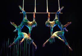 Image result for circus de soleil