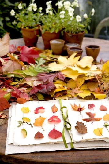 Leaves...fun activity for kids