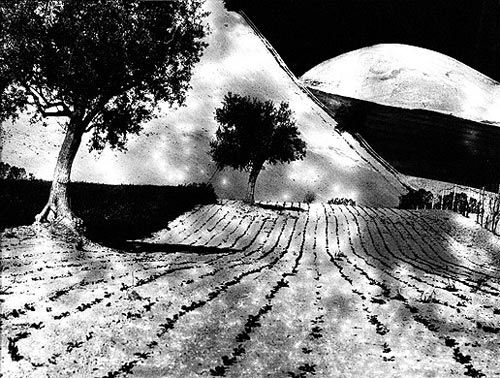 MARIO GIACOMELLI OFFICIAL WEB SITE