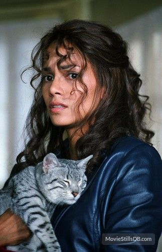 Catwoman (2004) Halle Berry