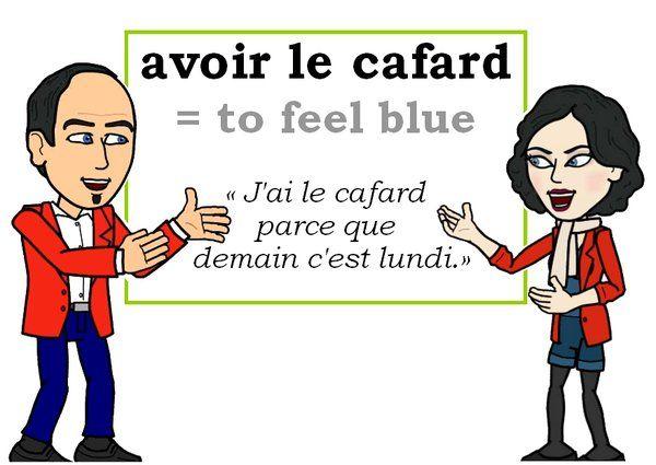L'expression du jour : « avoir le cafard » [avwaʀ le kafaʀ]   #fle #Expressionoftheday #learnfrench Tweets de Media par Les Machin (@Les_Machin) | Twitter