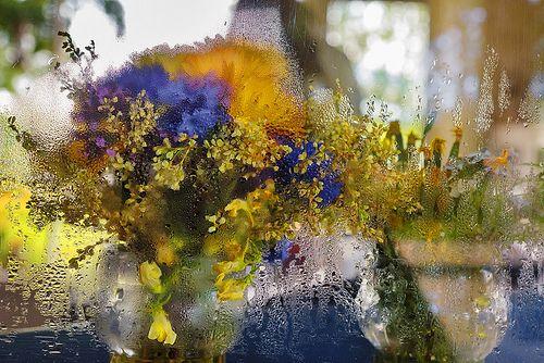 Fleurs Humides