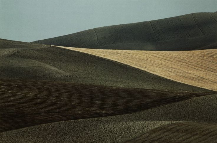 Puglia, 1975, Franco Fontana | LESS IS ART  | lessisart.altervista.org