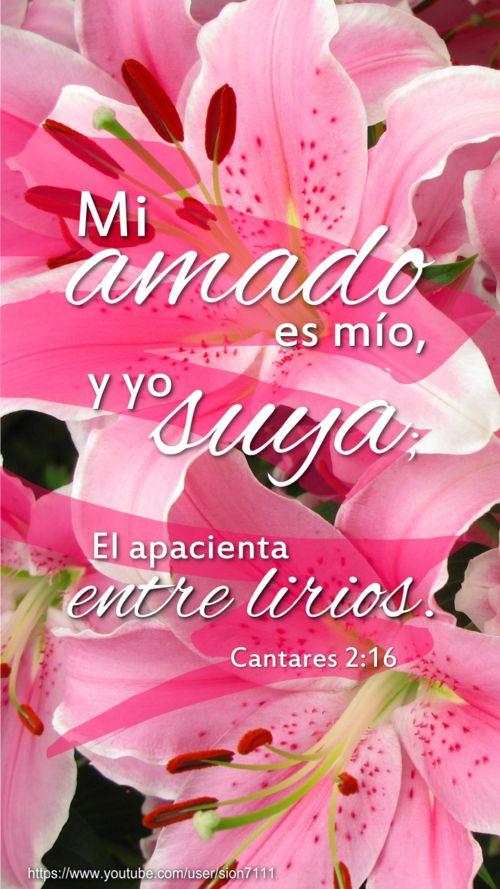 Cantar de los Cantares 2:16. Es wallpaper o lock screen cristiano para smartphone, espero que les guste :)