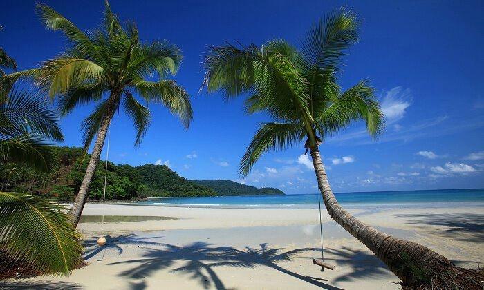 Isole ancora intatte, foreste tropicali e spiagge segrete: le gemme del golfo di Thailandia sono paradisi estivi perfetti.