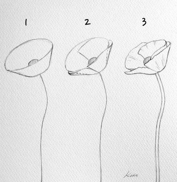 Drawing Flowers Drawingflowers Blumen Zeichnen Drawing Flowers In 2020 Blumen Zeichnen Blumen Skizzen Leichte Blumenzeichnungen
