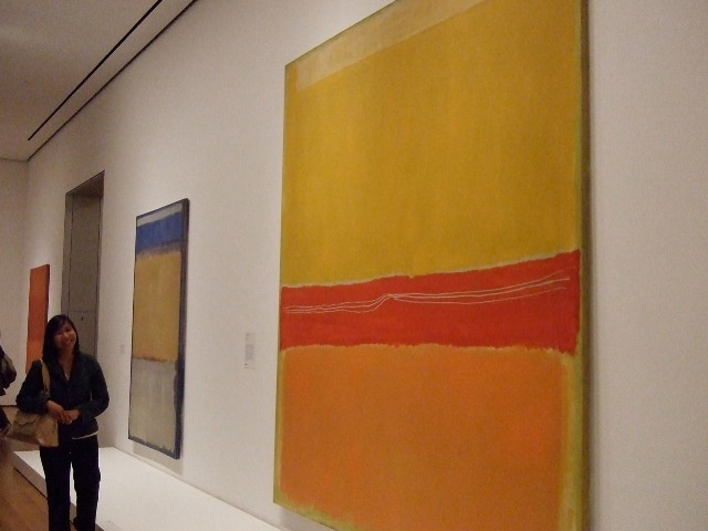the MOMA