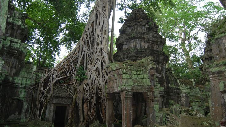 http://glamgrid.com/ta-prohm-the-mysterious-tomb-raider-temple/ Ta Prohm – The Mysterious Tomb Raider Temple