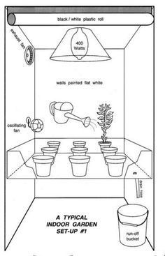 How to Grow Marijuana Indoors, Growing marijuana indoors, grow room, cannabis