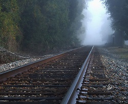 Train Tracks On A Foggy Morning: Training Stations, Train Tracks, Stations Track, Foggy Mornings, Posts, Training Track, Trains, The Roller Coasters