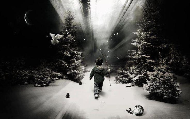 Αντιγραφάκιας: Μοναχικότητα και πνευματική αφύπνιση