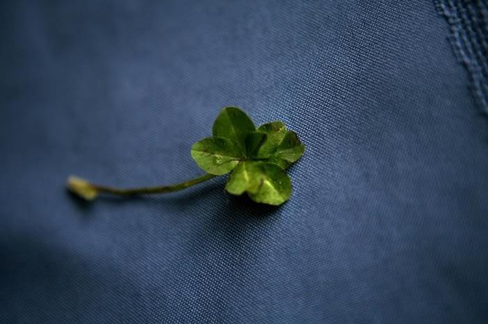 futurama 7 leaf clover ending a relationship