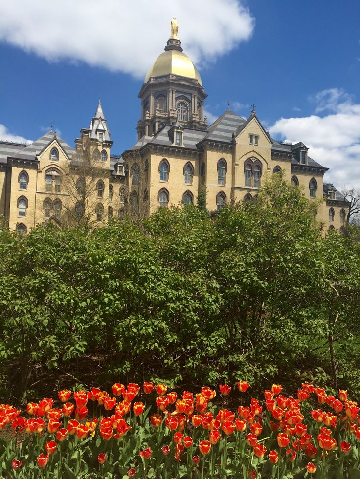 Notre Dame in Spring University architecture, Beautiful