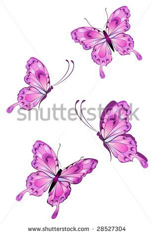 http://www.shutterstock.com/pic-28527304/stock-vector-beautiful-butterfly.html