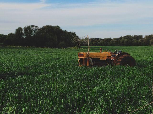 Lettre à un paysan sur le vaste merdier qu'est devenue l'agriculture... http://www.reporterre.net/Le-cri-de-colere-de-Fabrice-Nicolino-contre-le-desastre-agricole