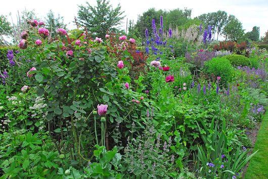 We kennen allemaal de 'onderhoudsvriendelijke' tuin, die grotendeels is bedekt met tegels. Gelukkig is dat geen landelijke trend. Uit het oogpunt van biodiversiteit en het afvoeren van