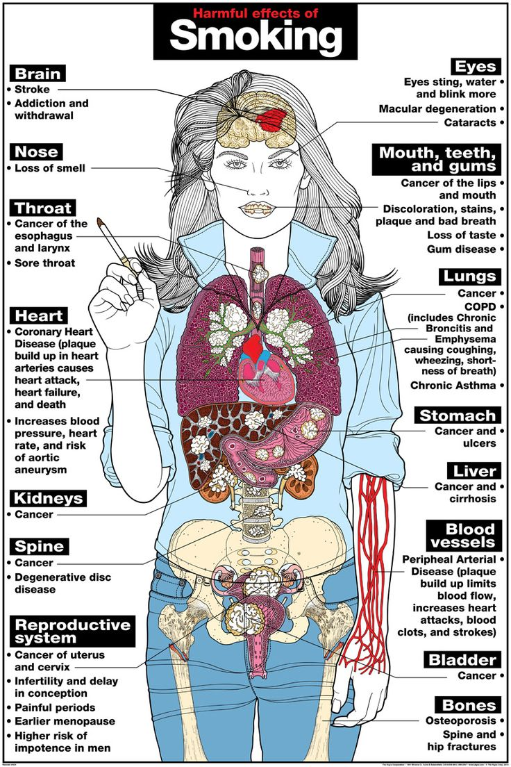 a study on smoking and its bad effects to the human body