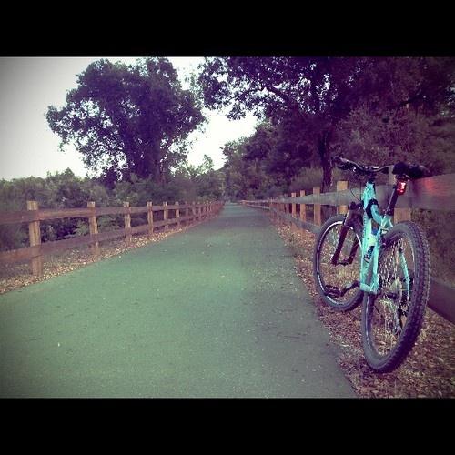 My Bike @ Ecopista do Dão (Photo taken and uploaded via MOLOME )
