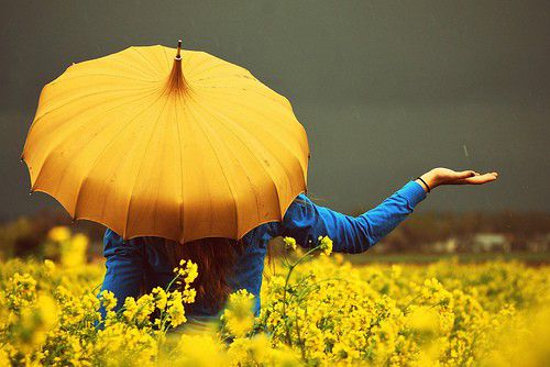 Yellow umbrella! <3