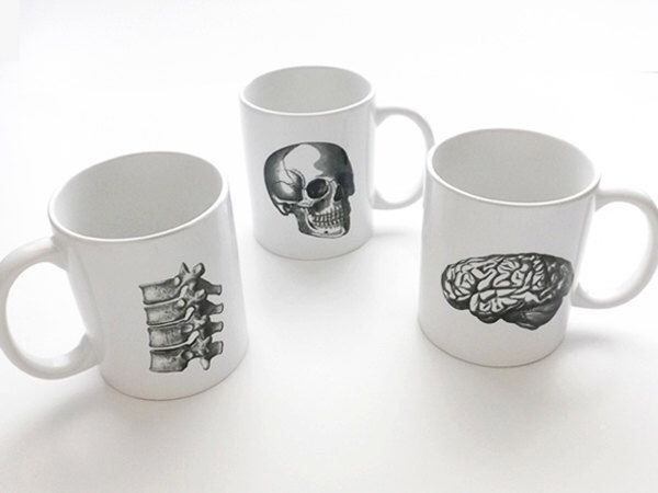 Anatomy coffee MUGS halloween skull brain physician assistant male nurse practitioner medical student gifts graduation biology goth spine par artaltered sur Etsy https://www.etsy.com/fr/listing/13620143/anatomy-coffee-mugs-halloween-skull