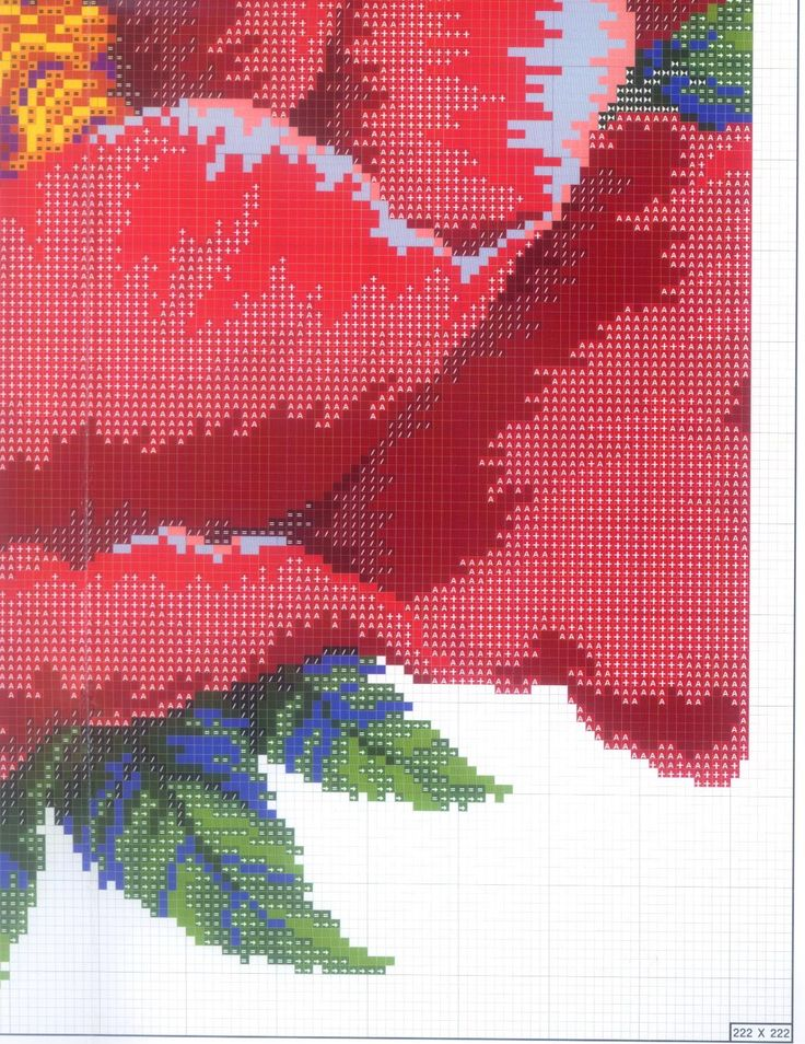 large poppy 1/8