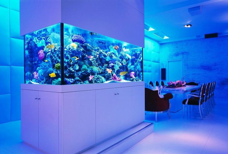 25 best ideas about fish aquarium decorations on for Cool fish tank themes