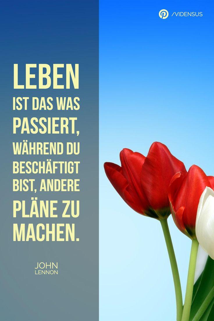 #leben #weisheiten #sprichwort #zitate