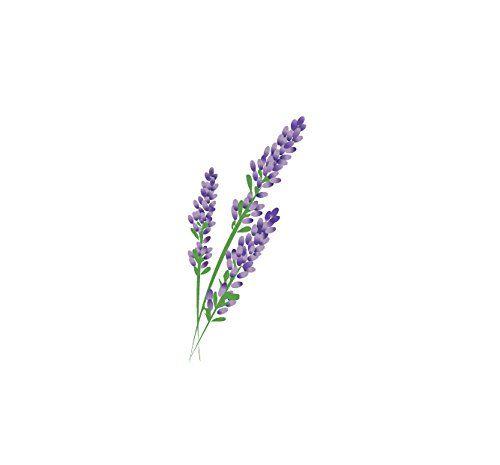 Lavender Sprig Drawing Www Imgkid Com The Image Kid