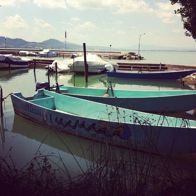 Voglio farmi un giro in barca sul lago #altrasimeno San Feliciano foto di @VerdeCardamomo