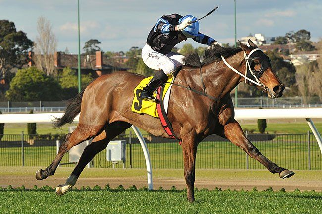 The Cleaner to keep Burles' colours : Australia Horse Breeding and Racing news updated daily, www.thoroughbrednews.com.au