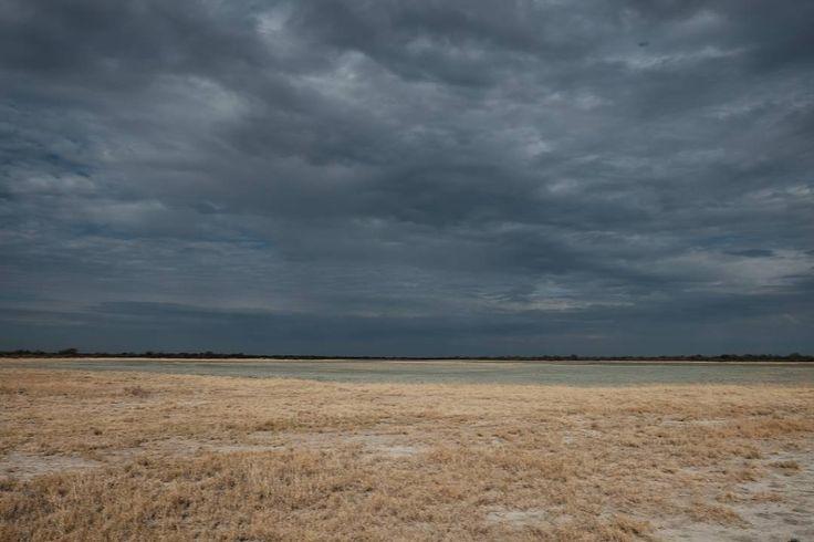 Botswana #landscape #landscapephotography #loves_africa #minimal #instagram #instagramers #fujifilm #fujifilm_xseries #eyeem  #myfeatureshoot #nature #naturephotography by yvonfoto