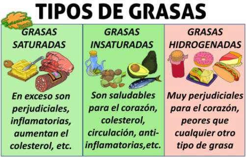 Tipos de grasas saturada insaturada hidrogenada omega http://www.botanical-online.com/medicinalesgrasastipos.htm
