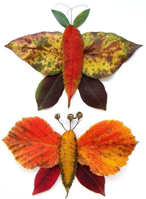 Imágenes Creativas: 31 foto ideas para trabajar con hojas secas