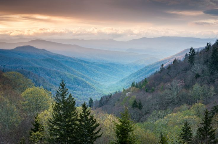 Peaceful Smoky Mountain view