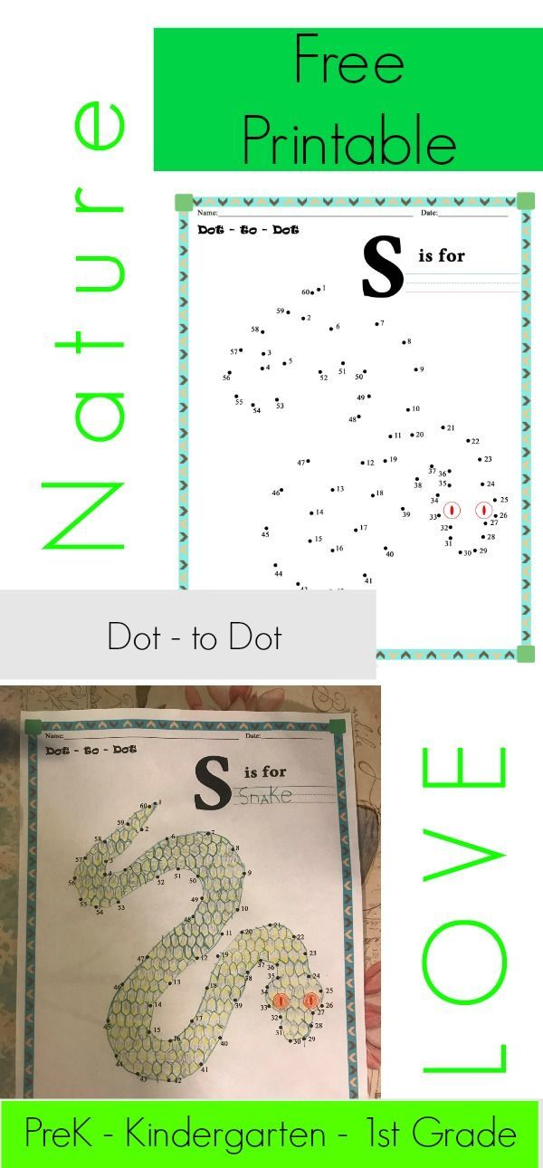 Dot-to-Dot Free Printable worksheet - S is for Snake - Numbers 1-60 ...